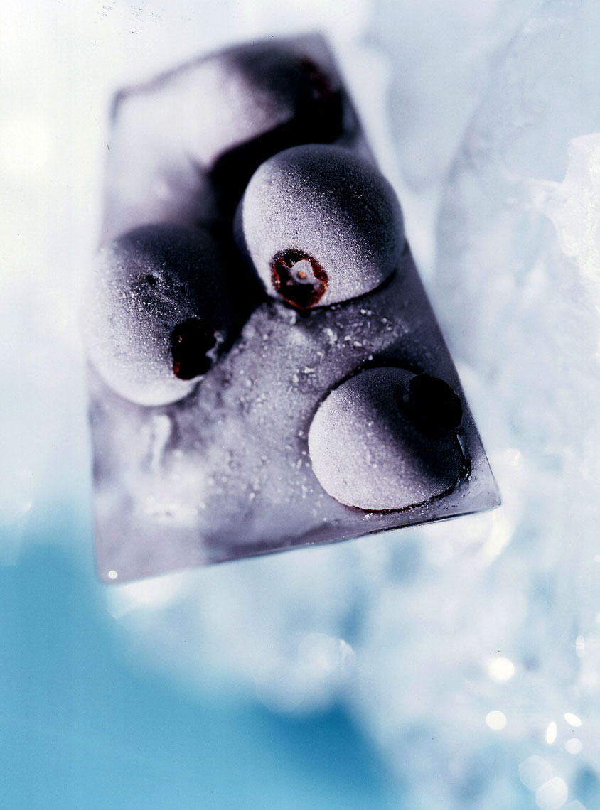 FOOD-WEB---BLUEBERRY-ICE-canvas